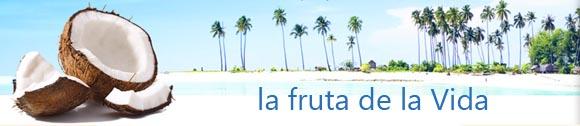 Coco, la fruta de la vida
