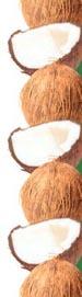 aceite coco y sida