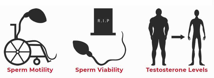 radiaciones - fertilidad